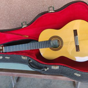 Guitarra flamenca Pedro Maldonado en Murcia