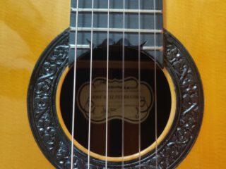 Guitarra Gama Alta de Ocasión